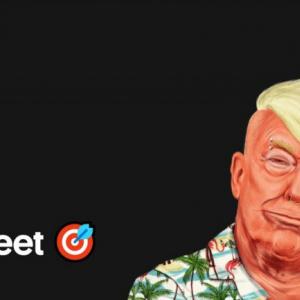 トランプ大統領がツイートするごとに反トランプ団体へ寄付を行う「Defeat by Tweet」が立ち上がる