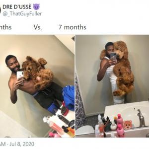 生後2か月と生後5か月を比較した子犬の成長記録 「体が大きくなってもまだ幼いんだよね」