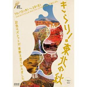 東北の魅力をたっぷり発信!NHK「きらり!東北の秋」本日スタート