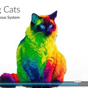 パズルのピースまでネコの形をしたネコのジグソーパズル「Herding Cats Puzzle」