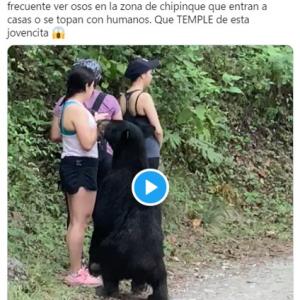 クマと遭遇しても終始冷静で自撮りまでしちゃう女性 「俺なら漏らしちゃうな」