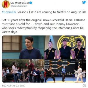 『コブラ会(Cobra Kai)』シーズン1&2は8月28日に配信開始 Netflixが発表