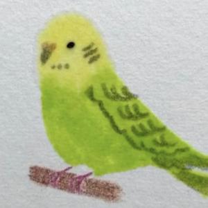水彩作家考案の「おうち絵画」がすごい 在宅中の新しい趣味にいかが?