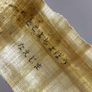 古代エジプトのパピルスで同人誌? 苗から育てて紙を手作りした同人作家のど根性制作記
