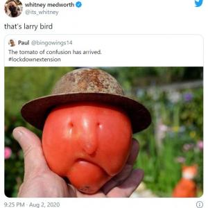 NBAの名選手に似すぎているトマトが話題 「バスケの神降臨」「トレンド入りしてたのは、このトマトのせい?」