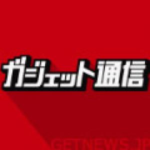 水際の鴨を狙った茶トラ猫、まさかの場所で水に落ち