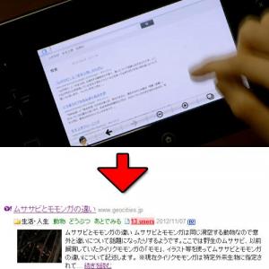 「ムササビとモモンガの違い」のページが『はてなブックマーク』新着にエントリーされる その理由は『WiiU』?
