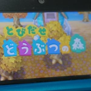 3DS『とびだせ どうぶつの森』 一瞬で道具を持ち替えるライフハック