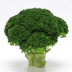 筋トレ民にブロッコリーが人気な理由って?栄養士が徹底解説!