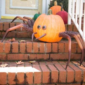 ハロウィンのかぼちゃを激変させるアイテム クモらしいけどカニにしか見えない