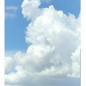松本人志さん「ミッキー撮れました」と雲の画像をツイートし反響 「ほれ」と回答のツイートも