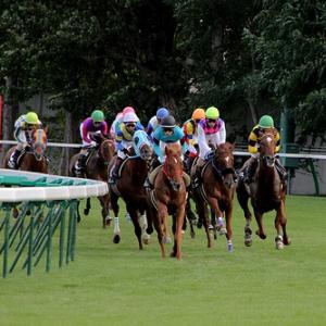 【GIマイルチャンピオンシップ予想】混戦必至のマイル戦線 秋のチャンピオンに輝くのはどの馬か