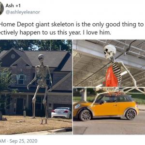 ハロウィンに高さ約3.6メートルの巨大ガイコツはいかがでしょう 「子どもが見たら泣くやつ」「ハロウィン後にこれを置いとく場所なんかないぞ」