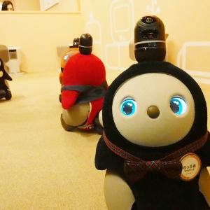 10体の『LOVOT』たちが「キューキュー」とお出迎え!? ラゾーナ川崎にオープンした『LOVOT Cafe』に行ってきた