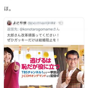 石原さとみさんが結婚 Twitterで「ぜひガッキーだけは結婚阻止を!」と直訴された河野太郎大臣「ほ。」