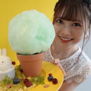 ミッフィー生誕65周年おめでとう!東京ソラマチに爆誕中の期間限定カフェで可愛すぎるミッフィーメニューを食べてきた