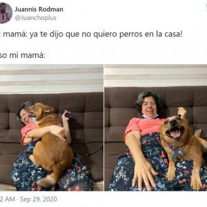 犬を飼うことに反対していたラテン系のお母さんたちの豹変ぶりがスゴイ