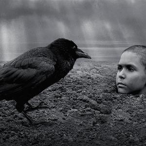 むきだしの暴力にさらされる、少年の過酷な運命 映画『異端の鳥』レビュー
