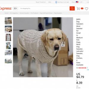 「めっちゃ嫌そうな顔w」「こんな不服そうな顔ある?」 犬用セーターの宣材写真に写ったワンちゃんが話題に