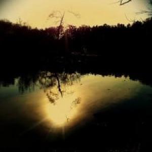 『千日の瑠璃』444日目——私は月の輪熊だ。(丸山健二小説連載)