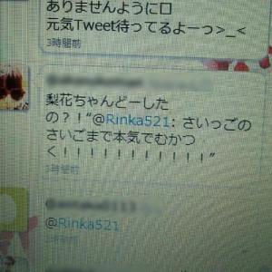 モデルの梨花がTwitterで突然の暴言→しかし即刻削除される DMを誤爆?