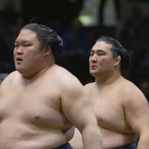 話題のドキュメンタリー映画『相撲道』が度々満席に! 悲喜こもごものツイートでSNSのタイムラインも満員御礼