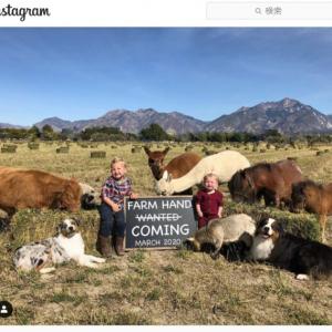 種を超えた愛情 多種多様な動物と共同生活する米ユタ州のメイビー家