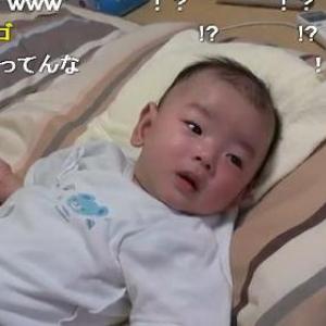 ジョジョのOP曲を流すと泣き止む赤ちゃん! 不思議な現象に皆驚き
