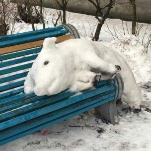 ベラルーシで発見された雪だるまならぬ「雪の豚」が話題に