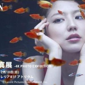 艷やかな一枚に釘付け!有名女優のハイクオリティ写真が東京ミッドタウンで展示中