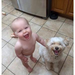 親友同士のような絆が感じられる犬と子どもの写真 5選