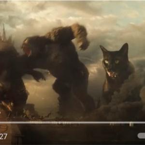 『ゴジラVSコング』の予告編にネコを出演させたファンムービー 「日本語の予告編も観てみたい」「ゴジラやコングより狂暴に見えるけど」