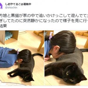 娘と猫が大騒ぎ →突然静かになったので様子を見に行った結果…… 尊すぎる光景が広がっていた