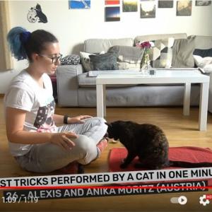 「1分間にネコがした芸の最多数」なんてギネス世界記録まであるんですね 「我が家のネコは1つも言うこと聞いてくれないのに」「どれだけの忍耐力が求められることやら」