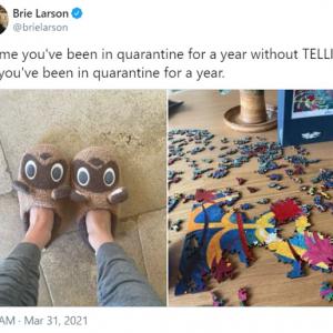 著名俳優の「何も言わずに1年間ステイホームしたことがわかるように伝えて」というツイートに反応する人々