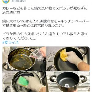 スポンジを汚さずカレー鍋を洗う方法に目からウロコ 「早く知りたかった」「排水溝も救える」