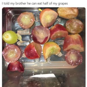 「ブドウ半分食べていいよ」とは言ったけど…… 「これは怒るよな」「間違ってはいないんだよね」