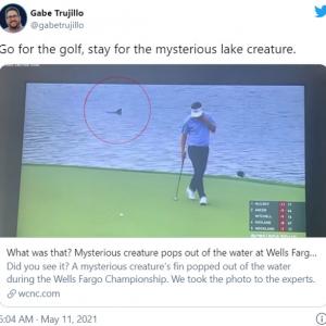 ゴルフ場の池に出現した正体不明の生物 「何これ?」「水中にはモンスターがいるってこと」