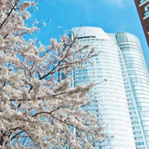 2013年決定版!東京のお花見イベント10選