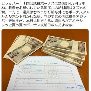 丸山穂高衆議院議員「ヒャッハー!!国会議員ボーナスは額面314万円っすね」「マジでこの国は税金アジャパー天国すぎ」ツイートに反響