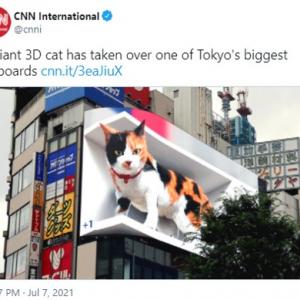 世界中に拡散した新宿の3D巨大猫 「日本は別世界」「宣伝広告の未来形」
