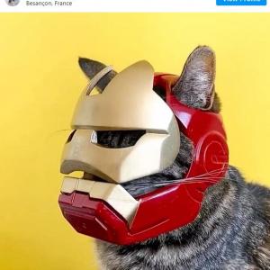「超カッコイイ!」「アイアンキャットだ」 3Dプリンターで愛猫用ヘルメットを作ってしまう飼い主さん