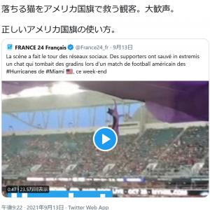 アメフト会場で猫が高所から落下!観客が国旗でキャッチする動画が話題に ひろゆきさん「正しいアメリカ国旗の使い方」