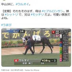 「ウルオイ」や「オヌシナニモノ」「アイアムハヤスギル」 ユニークな馬名の競走馬が次々に出走しSNSで話題に
