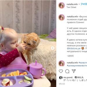 仲が良すぎてほぼ親友のような女の子の赤ちゃんと猫 「ケンカすることはあるのかな」「いっつも一緒じゃない」