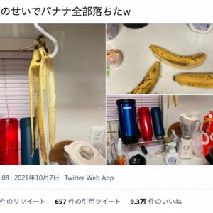 朝ごはんはバナナ確定! 地震のせいでバナナが全落ちした無残なバナナスタンドの画像がTwitterで話題に