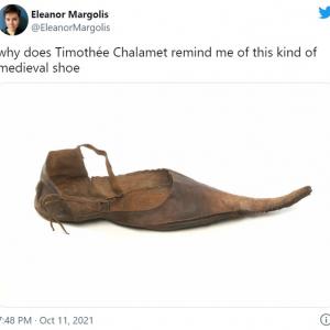 ティモシー・シャラメ=中世の靴!? 「同意せざるを得ない」「不思議だけど納得しちゃう」