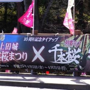 桜の名所と人気楽曲がコラボ! 「上田城千本桜まつり10周年×初音ミク 千本桜」に行ってきた