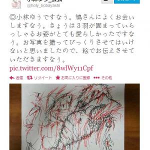 声優の小林ゆうさんが描いた鳩の絵が凄い