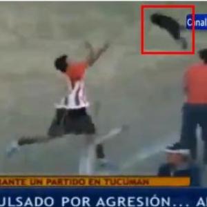 サッカー試合中に犬が乱入 首をつかんで外に投げるも失敗してフェンスに激突 ファンが激怒し大ブーイング後レッドカードで退場